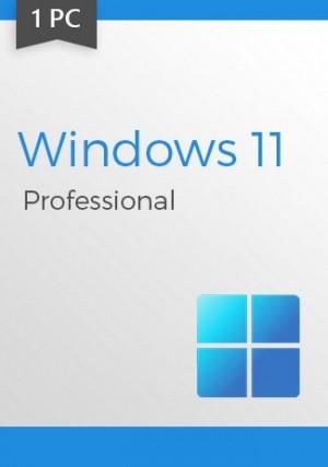 Windows 11 Professional Key